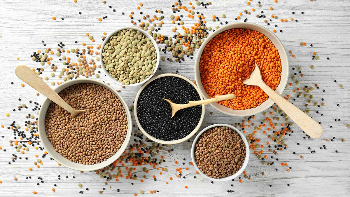 canadian-spotlight-lentils