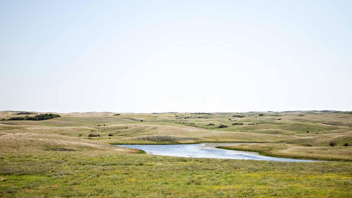 prairie-grasslands