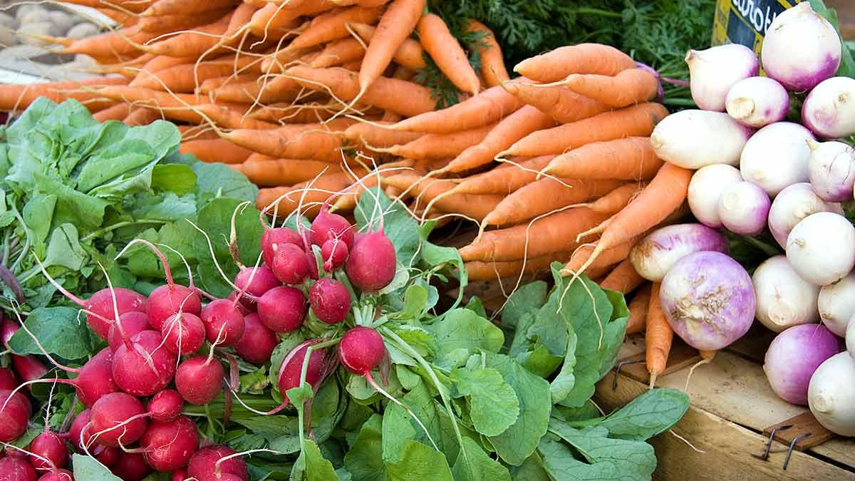 carrots-and-radish